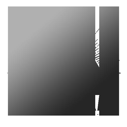 gun abraham